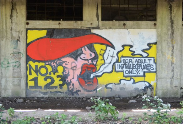 graffiti painting of a person's head with wide brimmed red hat covering the upper part of the face. Words coming from his/her mouth are: For adult intellectuals only. On a wall in an abanded train station