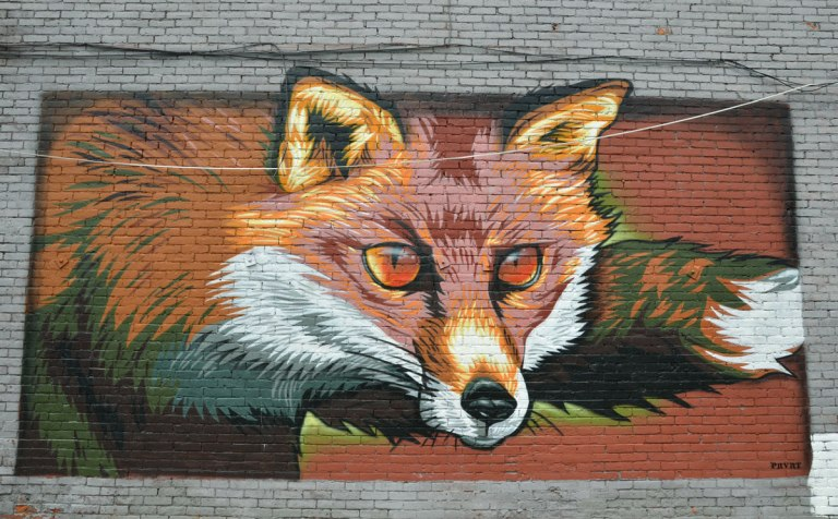 Wall Therapy mural in Rochester, on the side of a building, A very realistic looking fox with round beady eyes