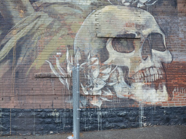 detail of a larger mural - a large skull with a flower