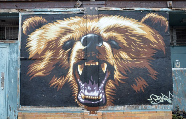 A mural of a grizzly bear face up close, his mouth is open and his teeth are showing
