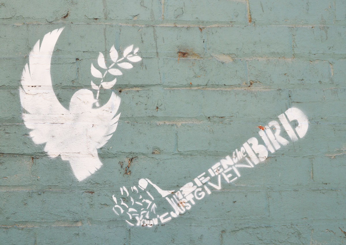 """a white stencil on a blue wall, a dove in flight with an olive branch in its mouth. A hand and arm is made of the words """"You have just been given the bird"""""""