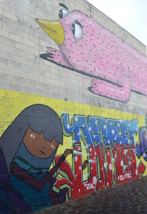 mural by bmd on an alley in Brunswick Melbourne, a pink animal on the top and a picture of a girl on the bottom