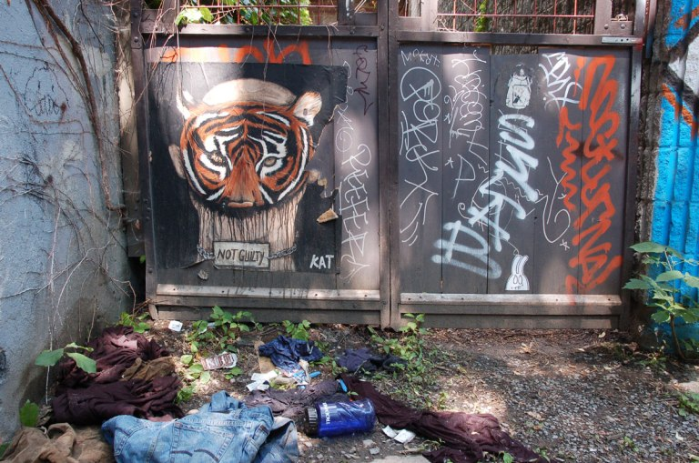 KAT graffiti artist poster of a person wearing a tiger mask, head and shoulders only visible, with a sign in front of it that says 'not guilty'