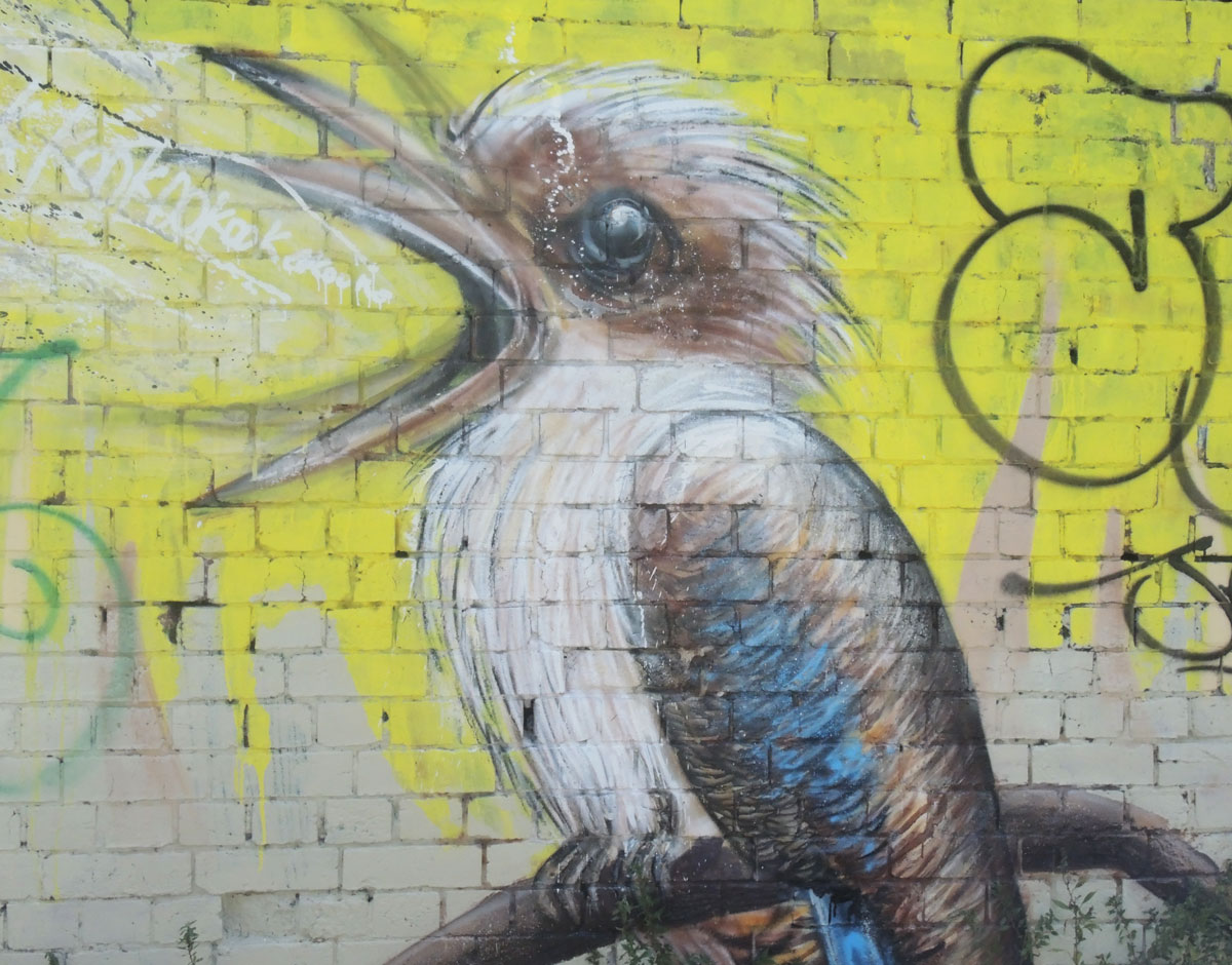 part of a larger mural, a kookaburra bird sitting on a branch with its beak open wide., yellow background