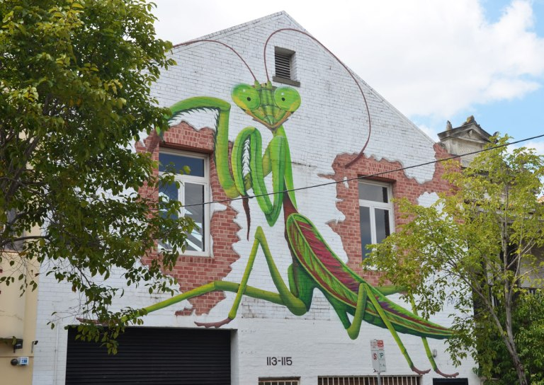 street art of a praying mantis on the side of a wall