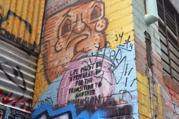 "street art on a wall in an alley, brown man's face with the words ""Life must be preparation for the transition to another dimension"""