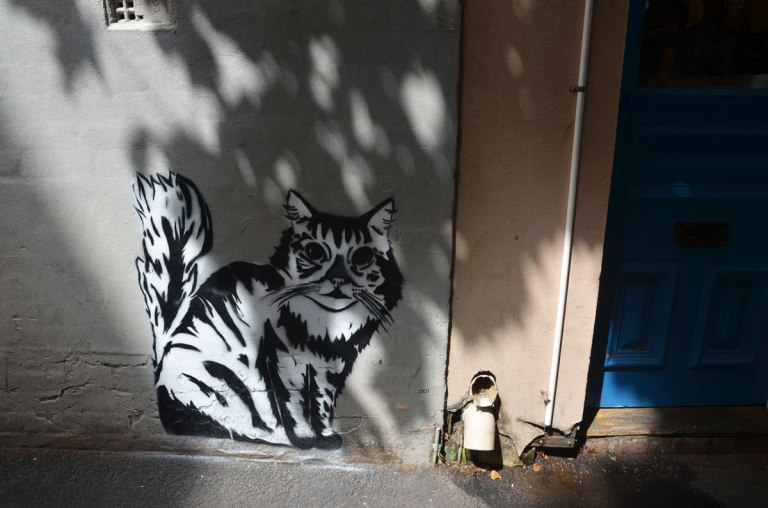 A black and white graffiti cat, life size and looking real, on a wall, in the shadows beside a blue door.
