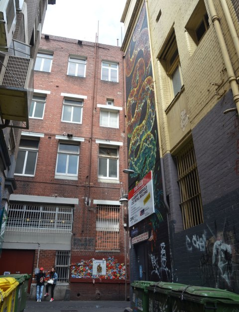 large vertical mural up high on a multi storey building in an alley, a snake winds its way up the building
