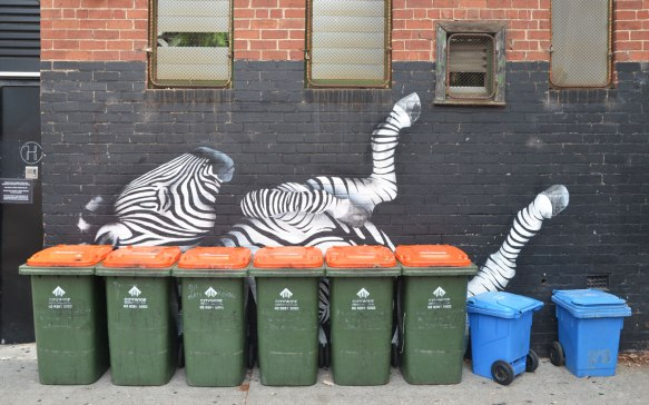 A street art painting in black and white of a zebra lying in the ground with its feet in the air. A line of green rubbish bins is in front of the zebra and partially obscures it.