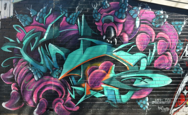street art in teals and magenta, with words written small in the corner 'Lost the Plot' signature seems to be NCWB