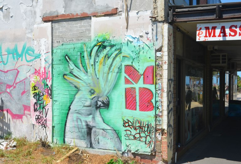 the head of a bird with lots of tall feathers on its head, whitish bird on greenish turquoise background, on a wall beside a building with a massage sign hanging above the door.