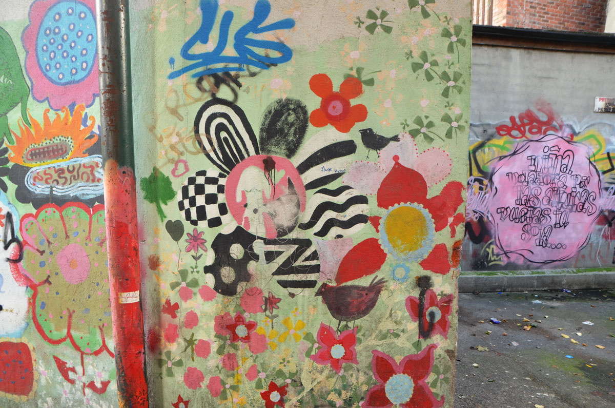 flowers in different colours, black and white pattern on petals, plus red petals, yellows and pinks too. In the background a pink blob with words written on it, street art,