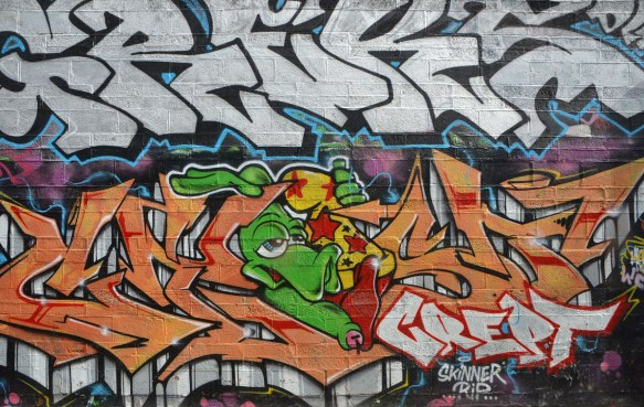 graffiti on a wall, large amount of text, with a green turtle head holding onto a yellow wizard cap with red stars on it., signed by crept and also says RIP skinner