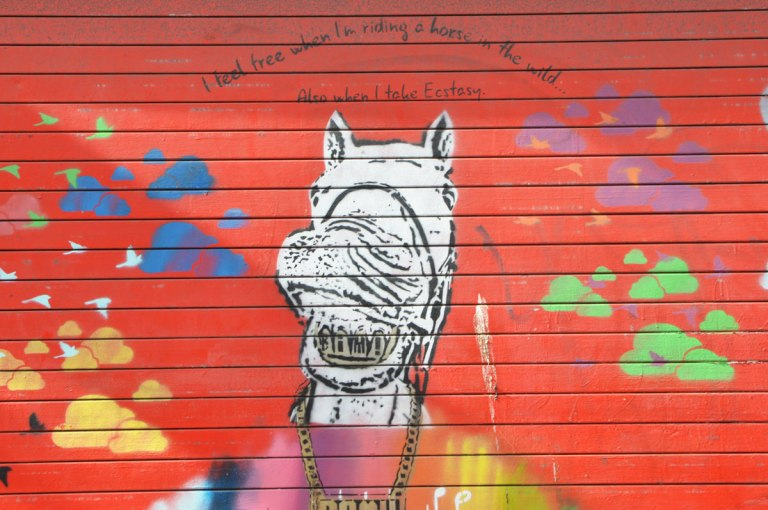 wall painted red, stencil of a horse's head plus some blobs in green, yellow and blue. Words written on it that say I feel free when I ride a horse in the wild and when I take ecstasy