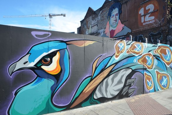 a large mural of a colourful peacock onwood construction hoardings.