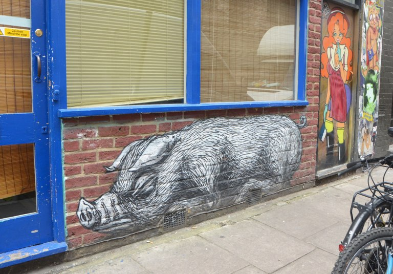 black and white paste up of a pig below a window, looks like its sleeping on the sidewalk