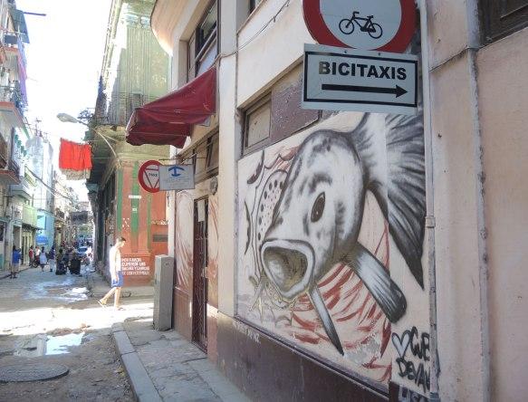 blog_fish_street_art_wall