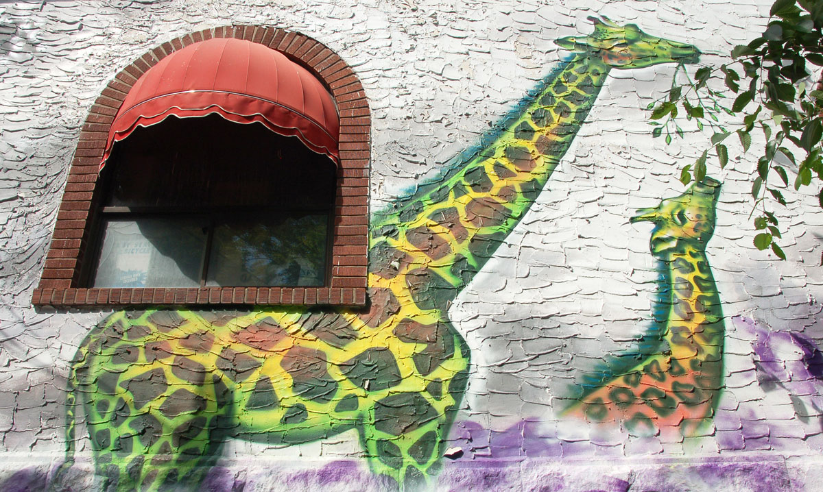 street art, graffiti, animals painted on a wall - a tall adult giraffe and a smaller young giraffe eating leaves with necks outstretched. A branch of a real tree is also in the picture and it looks like the girafffes are eating the real leaves
