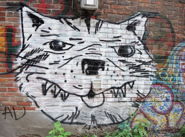 street art, graffiti, animals painted on a wall - a large black and white cat head