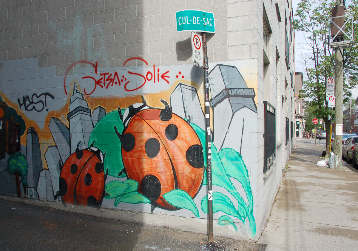 street art, graffiti, animals painted on a wall - two large ladybugs on green leaves