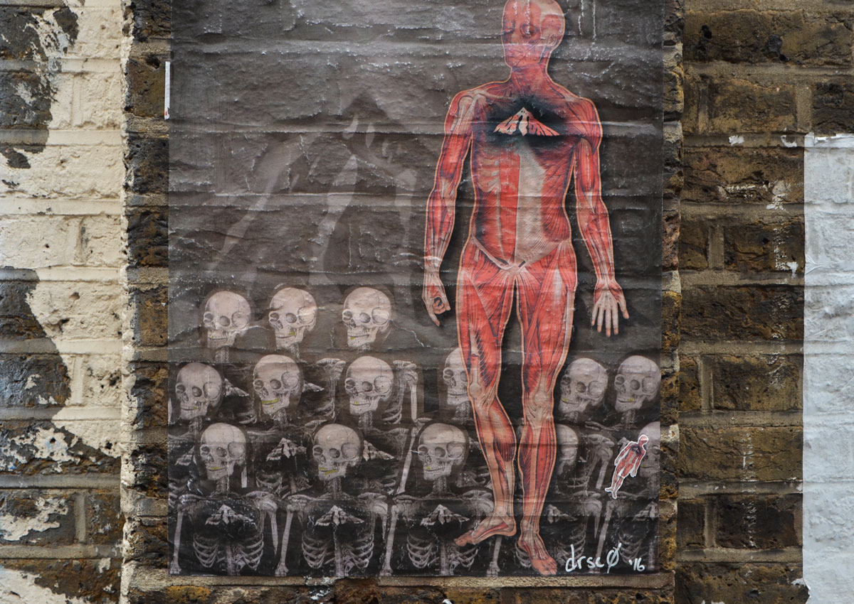 pasteup of a man showing his musculature, like a standing body with the skin removed. He is standing in front of rows of skeletons. A pasteup street art piece by drsc0