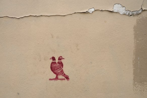 reddish stencil graffiti of two birds standing beside each other