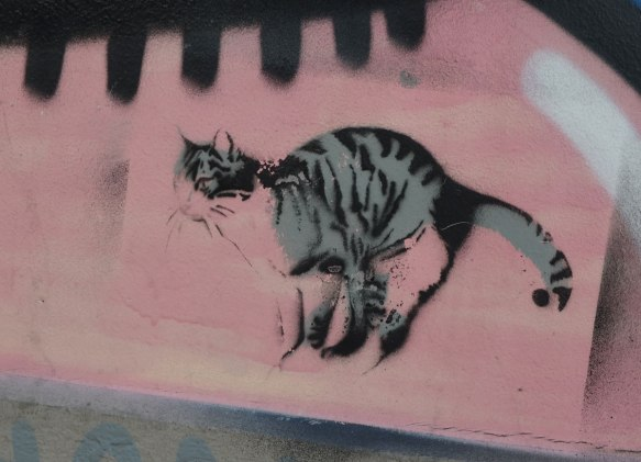 stencil of a realistic grey and black cat on a pink wall