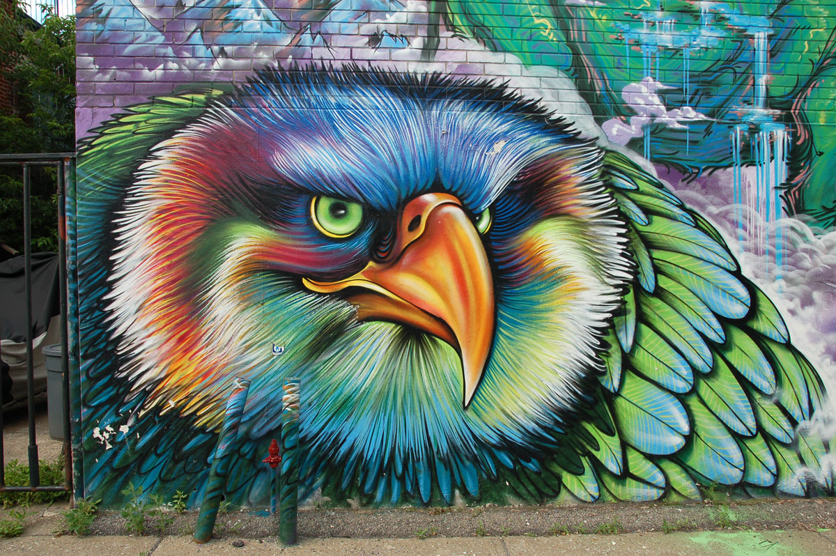 street art, graffiti, animals painted on a wall - A brightly coloured bird head with fine feathers and a large yellowish orange beak
