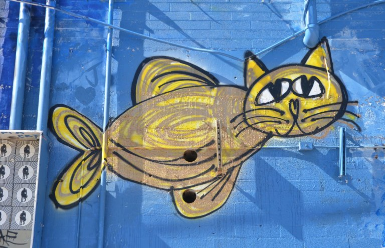 blog_coolidge_cat_yellow