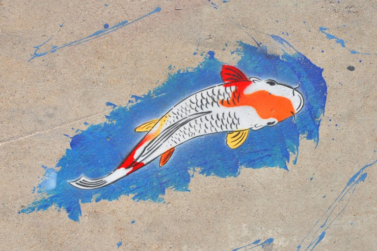 a brightly coloured fish white with spots of orange, red, and yellow, swims in a blue patch on the pavement