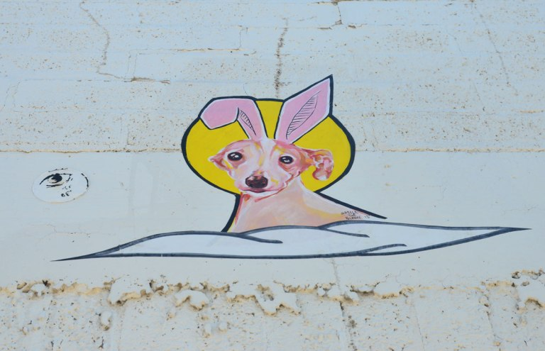 graffiti street art on a white wall - a dog on a cloud with the sun behind, he has pink bunny ears. A wheatpaste by Milk the Bunny