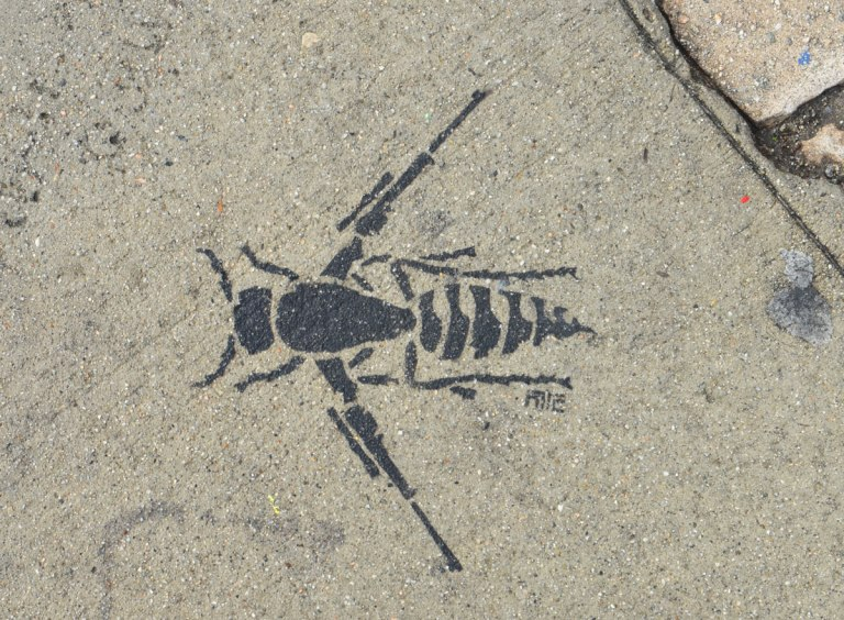 black stencil on grey concrete sidewalk, a beetle with folded wings that are automatic rifles