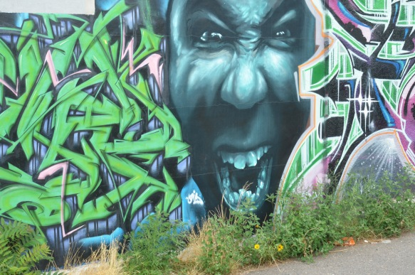 on a fence, street art, text and stylized throw up in greens on either side of a large black face with mouth open showing white teeth,