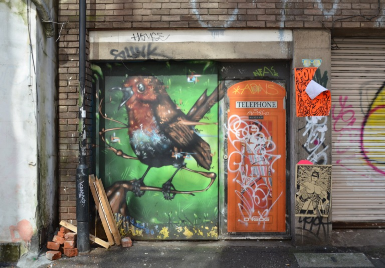 a robin on a branch, mural, on green background, on a wall beside another street art piece of an ornge British telephone box