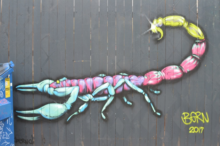 mural on grey wood fence of a very large insect from the side, pincer claws, six little light blue legs and a tail that curves upward, pink body, yellow tail,