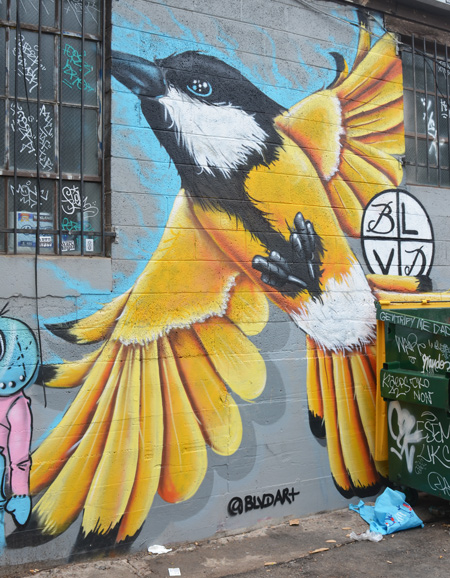 large painting by @blvdart of a yellow bird with black and white head