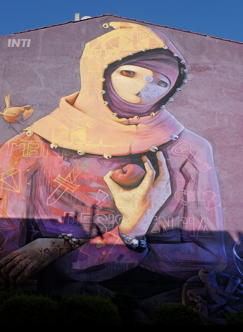 large mural by inti in Kadikoy Turkey, person with hood, holding an apple in hand,