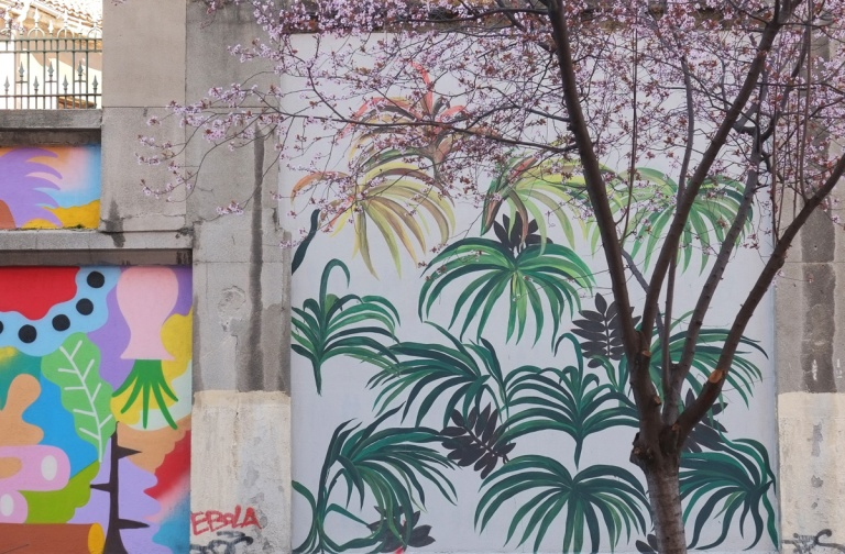 tree with pink spring blossoms in front a square mural, Madrid, muros tabacalera, leafy green plants with dark brown centers in the clusters