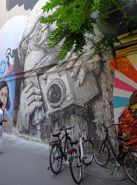 large mural of a monkey holding a camera and grinning