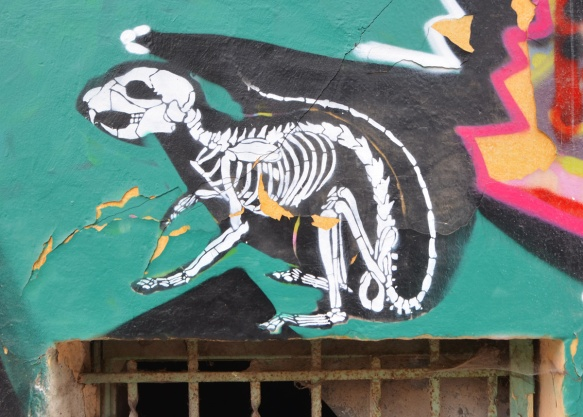 small street art piece, black background, white skeleton of small animal such as a cat or dog, very realistic skeleton