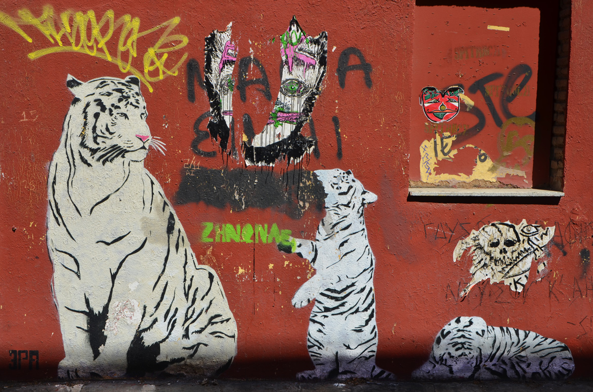 three white tigers on a red wall, a parent tiger with two cubs (kitts?), some other pasteups on the wall too