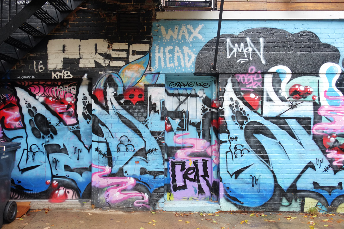 street art art mural in a laneway, back of building,