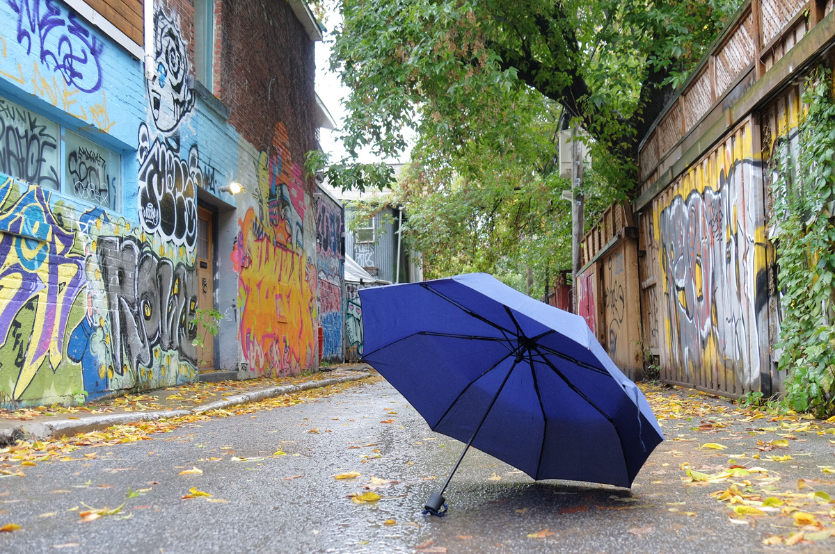 blue umbrella in a lane with street art and autumn trees on both sides