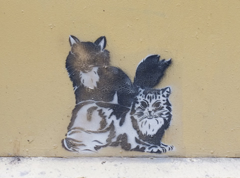 two black and white cats on a pasteup in a lane