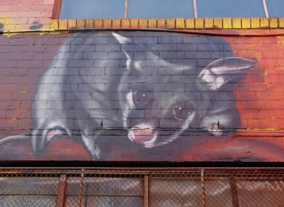 street art mural of a sugar glider, a small rat-like rodent