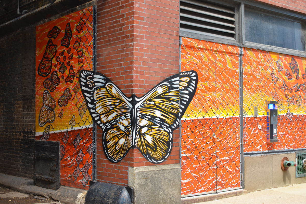 a butterfly painted on the corner of a building