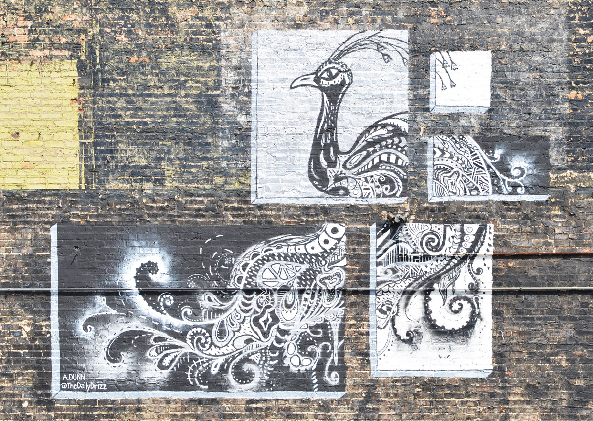 mural of a peacock done in black and white paint and made to look like it was done on 4 pieces of paper, on an old brick wall, by Andrea Dunn, a k a the daily drizz