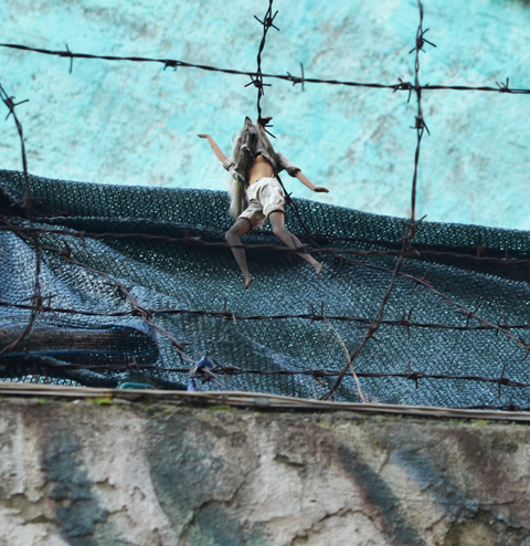 an old Barbie doll caught in a barbed wire fence above a mural