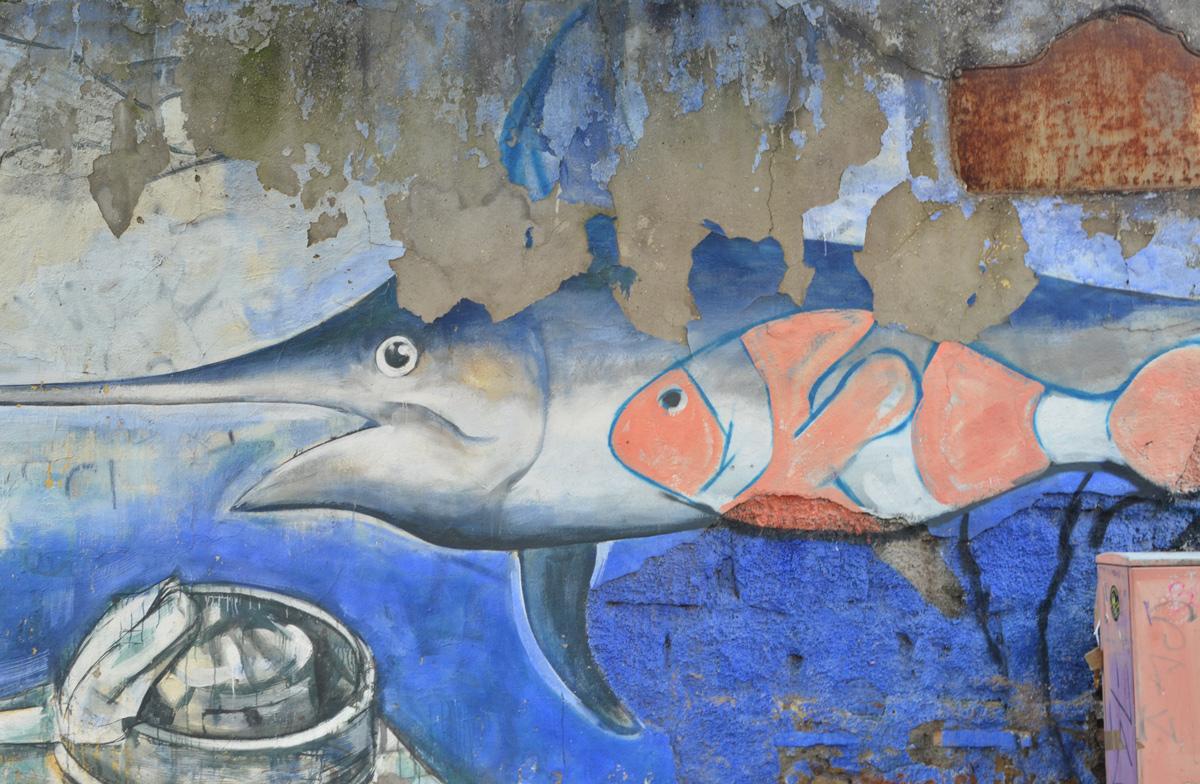 in a mural, a clown fish swims beside a swordfish