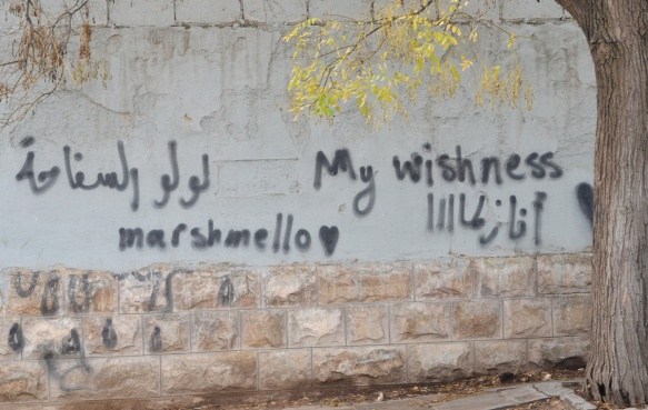 my wishness love marshmallow, words wirtten on a wall, graffiti